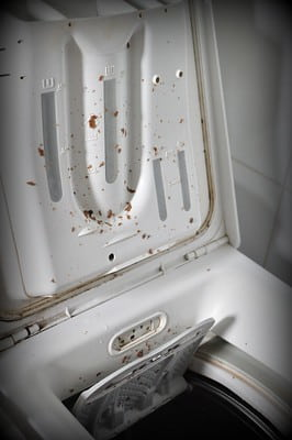 Clean your washing machine inside